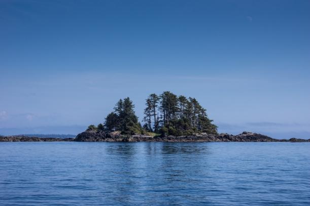 Little islands everywhere